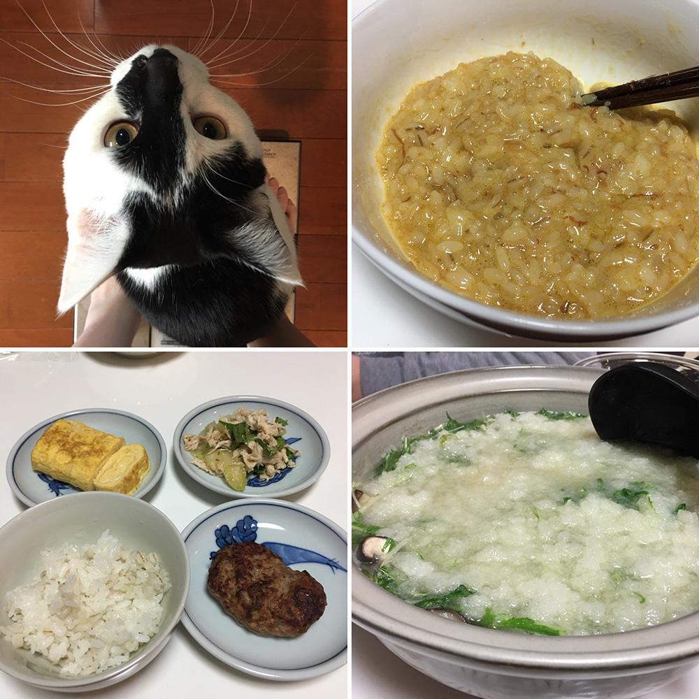 平成30年2月8日(木)今朝の体重と昨日のご飯