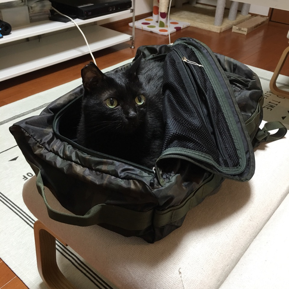 KURO in the bag2
